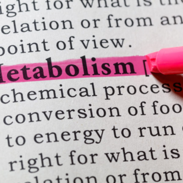The word Metabolism highlighted in pink in a dictionary.