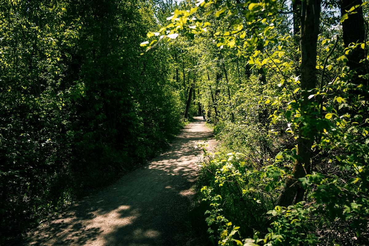 Fort Edmonton Park Trail